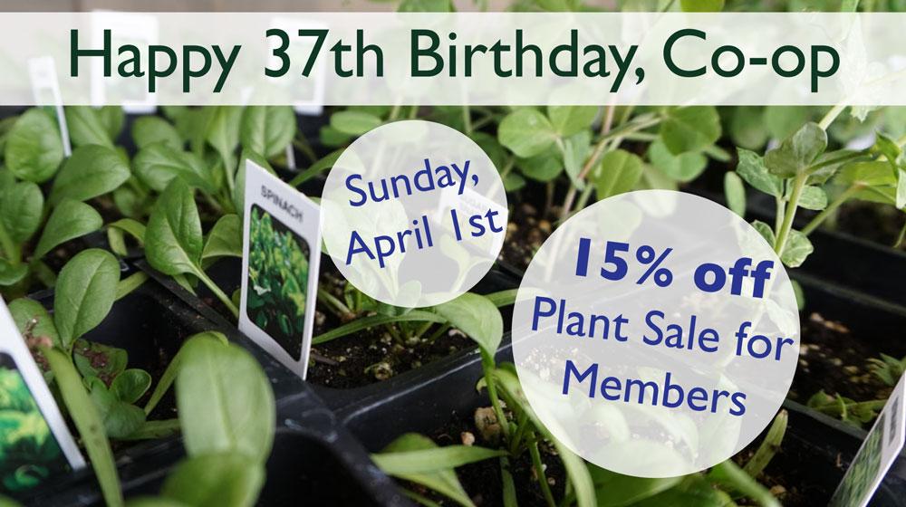 birthday plant sale