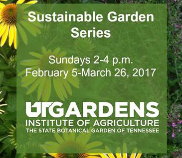 Sustainable Garden Series <br> February 5 - March 26 <br> UT Gardenst<br>