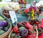 UT Farmers Market<br>May 22<br>Knoxville, TN