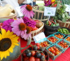 UT Farmers Market Wednesday Afternoons