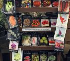Seeds for Spring